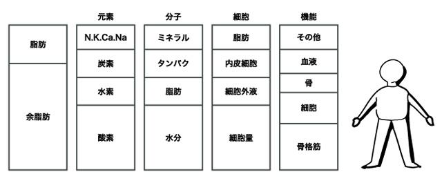 むくみの検査(InBodyS20)